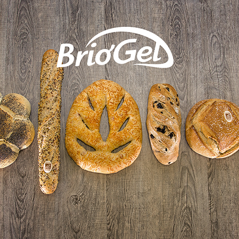Briogel-fabricant-pains-brioches-surgeles-realisation-agence-de-marketing-vendee-comwell