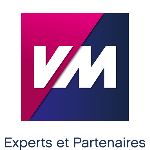 VM-expert-ppi-negoce-materiaux-groupe-herige-realisation-agence-de-marketing-vendee-comwell