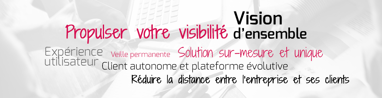 agence-webmarketing-vendee-expertise-web-mots-cles-comwell