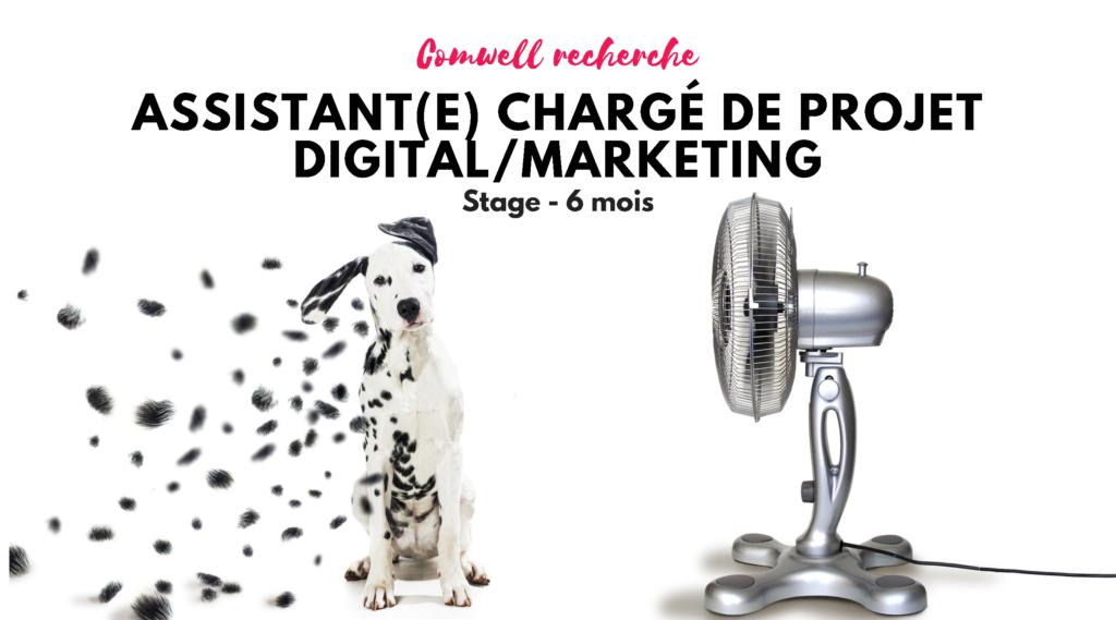 Comwell - stage 6mois - agence de communication et stratégie de marque